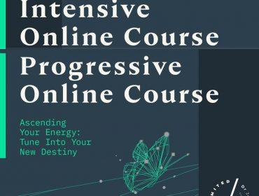 Progressive and Intensive Workshops
